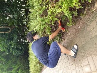 자원봉사로 환경지키기 4탄 (최신혁 0397)